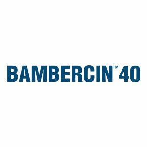 BAMBERCIN 40
