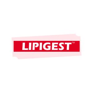 LIPIGEST